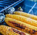 Maïs d'été grillé
