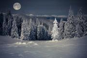 L'art d'envoyer promener son égo… sous la pleine lune !