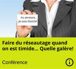 Conference - Reseautage pour timide - Johanne Bisaillon - Nanny secours